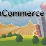 E-Commerce: Mobile E-Commerce