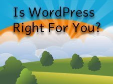 Why Is WordPress The Right Solution For You? | Blue Zenith