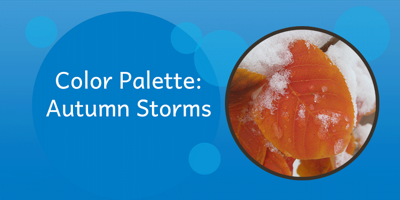 Color Palettes: Autumn Storms