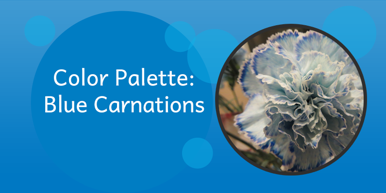 Color Palettes: Blue Carnations