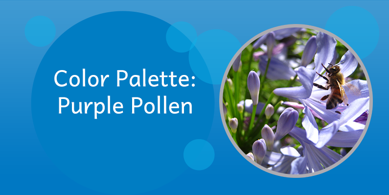 Color Palettes: Purple Pollen