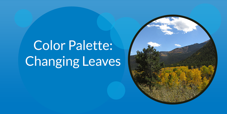 Color Palette: Changing Leaves