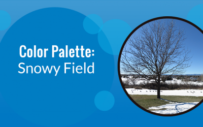 Color Palette: Snowy Field