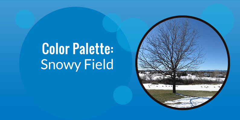 Color Palette: Snowy Field