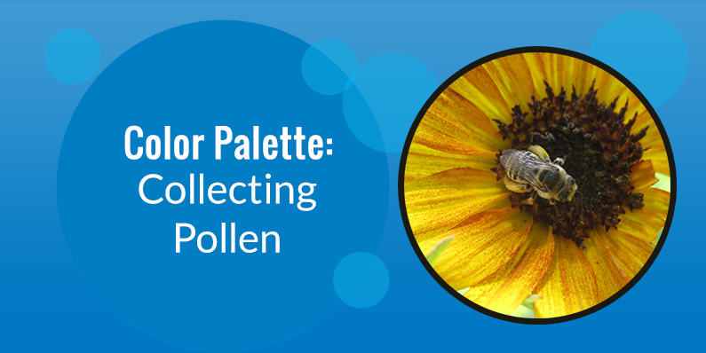 Color Palette: Collecting Pollen