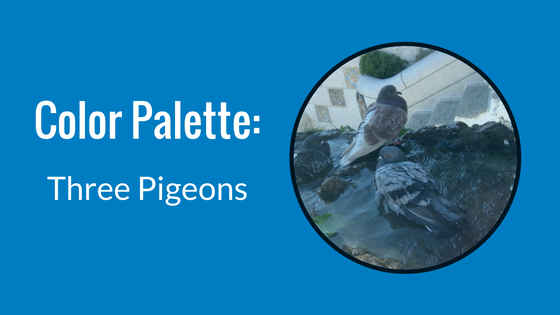 Color Palette: Three Pigeons