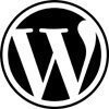 Blue Zenith Design + Strategy are WordPress Expert Developers